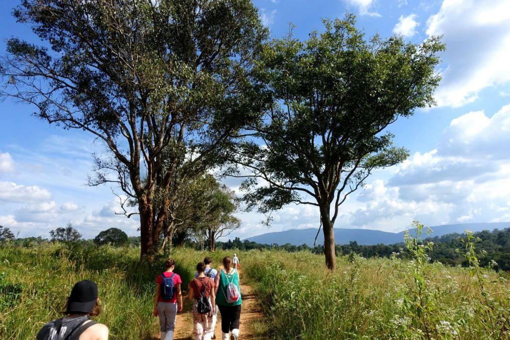Wanderung mit der Gruppe im Khao Yai.