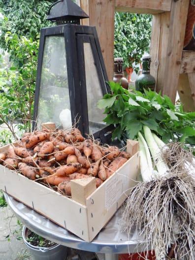 Gemüsebrühe aus Gartengemüse