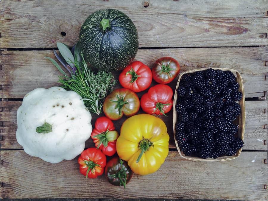 Tomaten, Patisson, Zucchini, Brombeeren