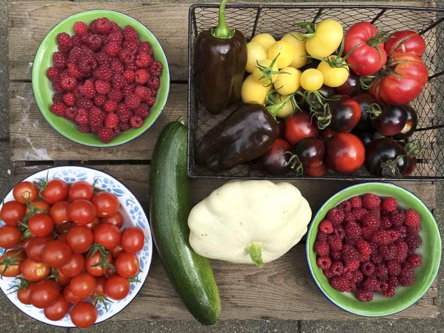 Himbeeren, Tomaten, Zucchini, Patisson