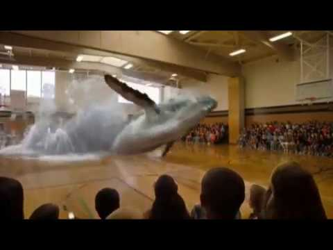 Virtual Reality - 3D Hologramme und Projektionen