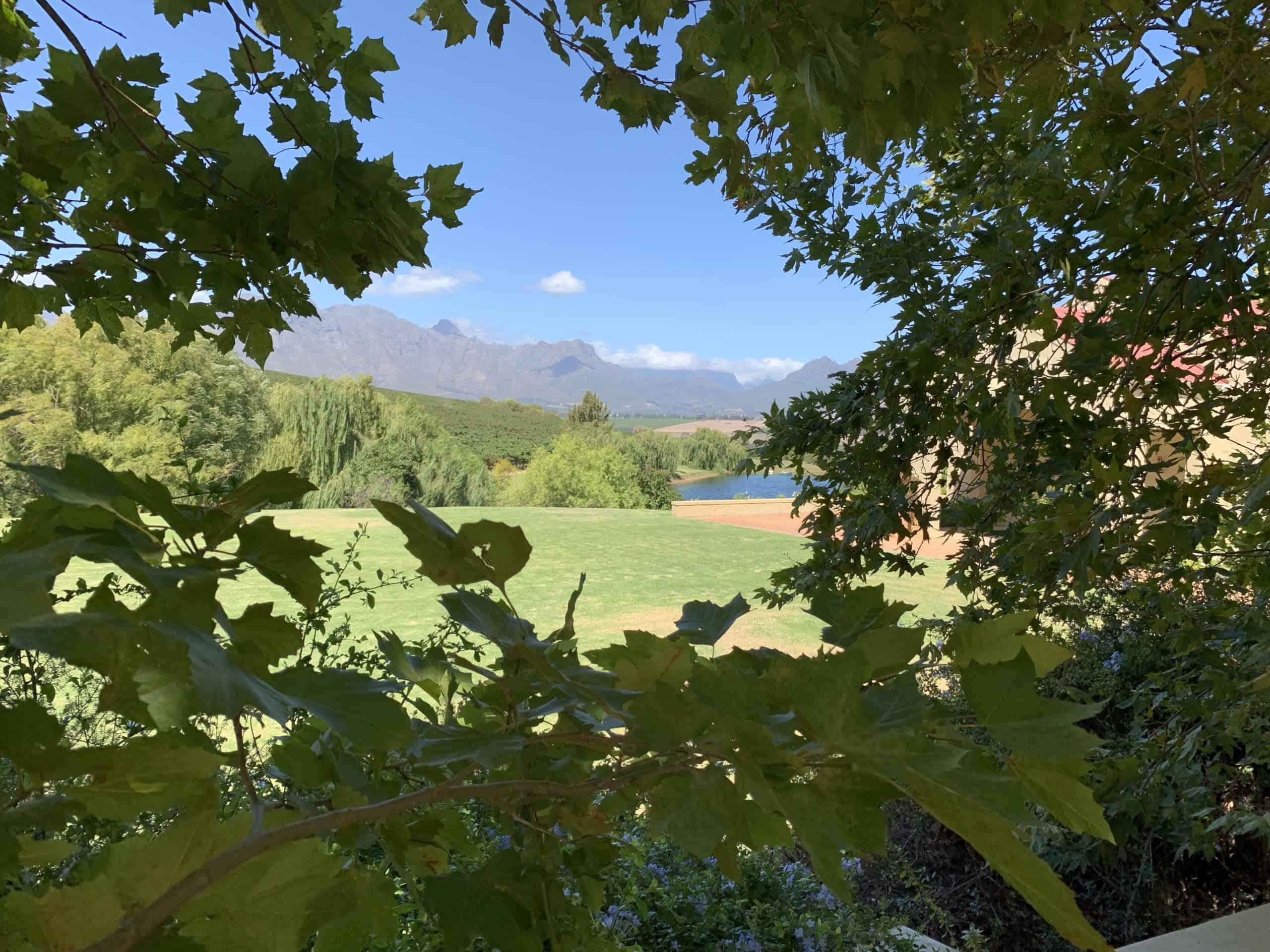 Weingüter in Stellenbosch