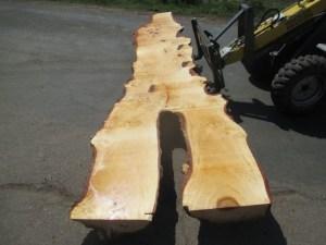 Tischplatte nach mass Kastanie B-00123
