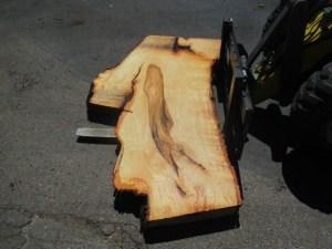 Tischplatte nach mass Linde B-00180