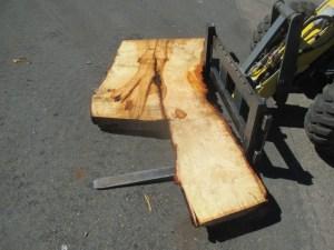 Tischplatte nach mass Linde B-00183