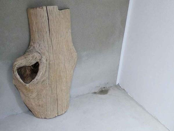 Tischplatte aus Massivholz Esche C/W 091