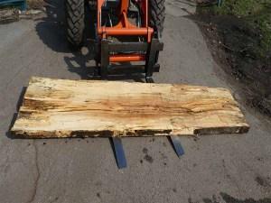 Holzplatten kaufen Buche O-00231