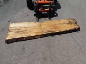 Holzplatten kaufen Buche O-00263