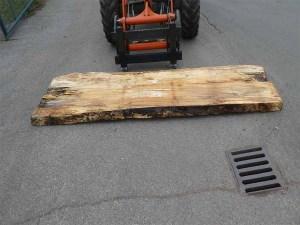 Holzplatten kaufen Buche O-00276