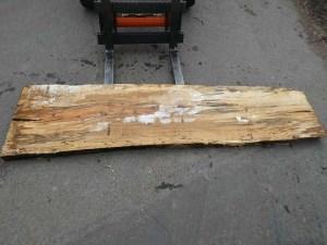 Holzplatten kaufen Buche O-00284