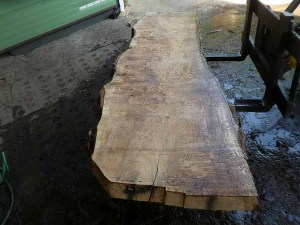 Holzplatten kaufen Pappel S-00097