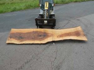 Kaufen Tischplatten nach Mass Esche R-00243