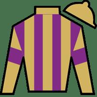Derby Horses