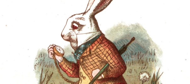 white-rabbit-copia-2