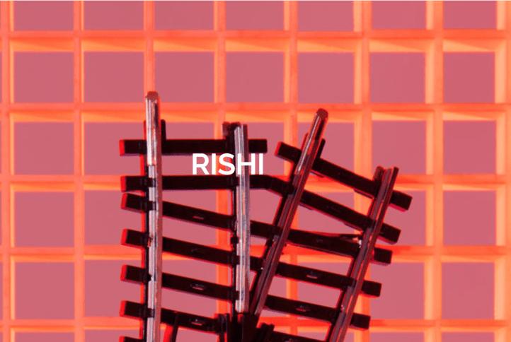 Rishi Firma MES Rishi Chandrikasing Den Haag Holland Spoor Theater aan het Spui Pakhuis de Regah Pakhuis de Reiger Pakhuis de Zwijger in Den Haag Schilderswijk Stationsbuurt