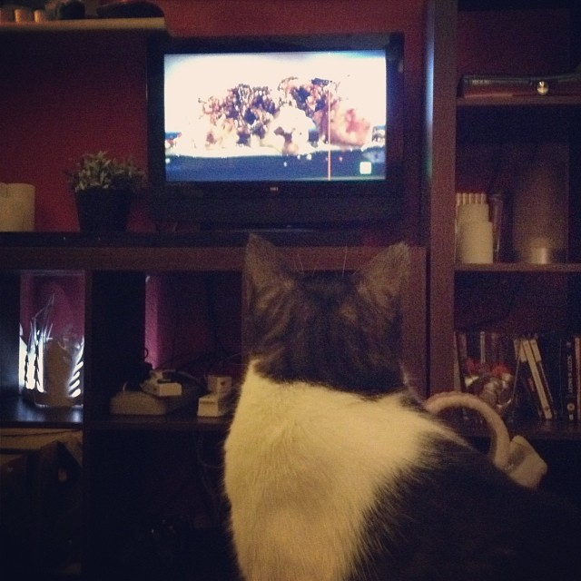 Jimmy watching a cookery programme on TV - from Instagram