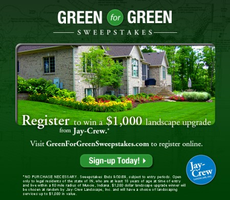 Jay-Crew_GreenForGreenSweepstakes