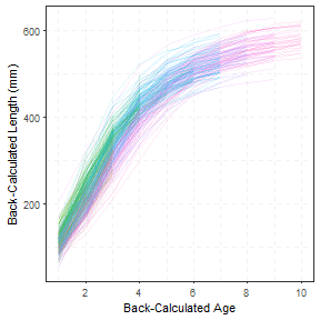 plot of chunk SpaghettiPlot1