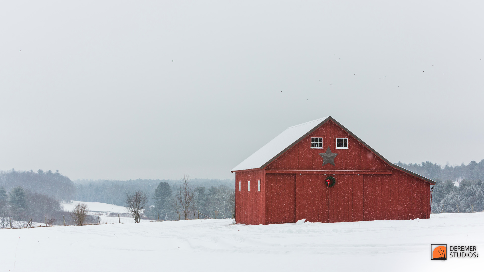Falling Snow Wallpaper Widescreen Up North Fine Art Shoots From North Of Fl A Snowy