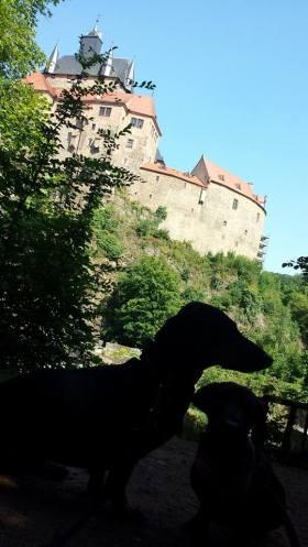 Burg kriebstein blogparade wandern vor der wohnungstuer 13