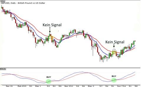 Momentum Signal