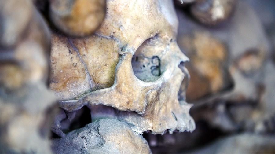 Beinhaus: Schädel