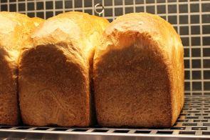 07 boulangerie gout(ブーランジュリーグウ)ハードトースト
