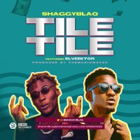 Shaggyblaq x Elveektor - Tile Tile | Download Mp3