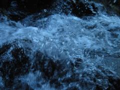 Wassertropfen im Naturpark