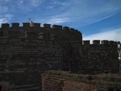 Castle of Dean