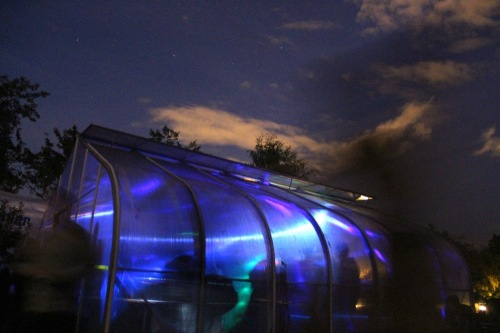 Party like its a greenhouse
