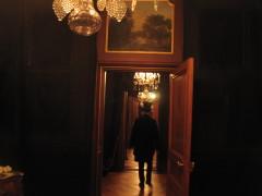 Im Hallwylska Museet