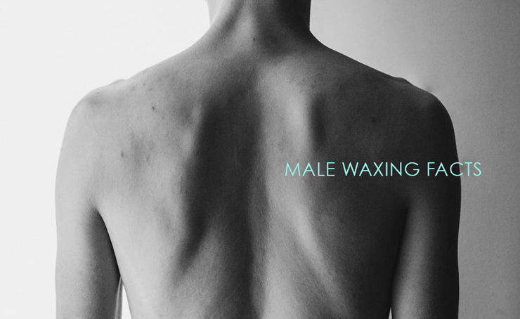 MALE WAXING FACTS