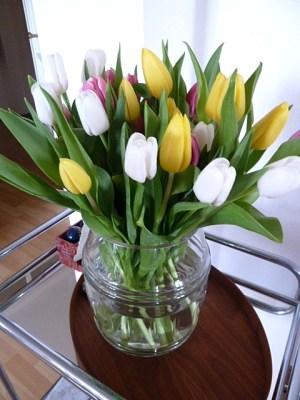 Bunte Tulpen von meiner Mutter