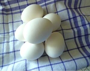 Eier hart kochen