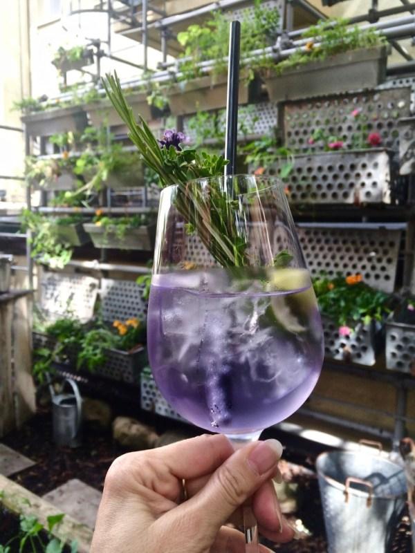 mein Lavendel-Gin Aperó