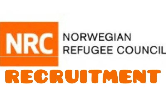 ICLA Technical Assistant (Damasak) at the Norwegian Refugee Council (NRC)