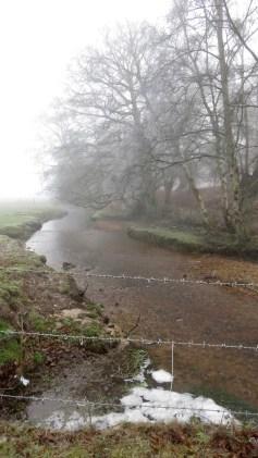 Stream in mist 2
