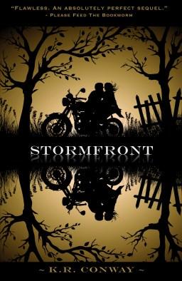 derry-nh-stormfront