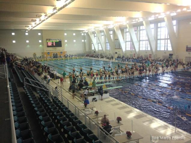 Atlanta, 2015: 50m Langbahn Olympia Pool.