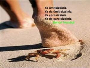 umit_sizsiniz
