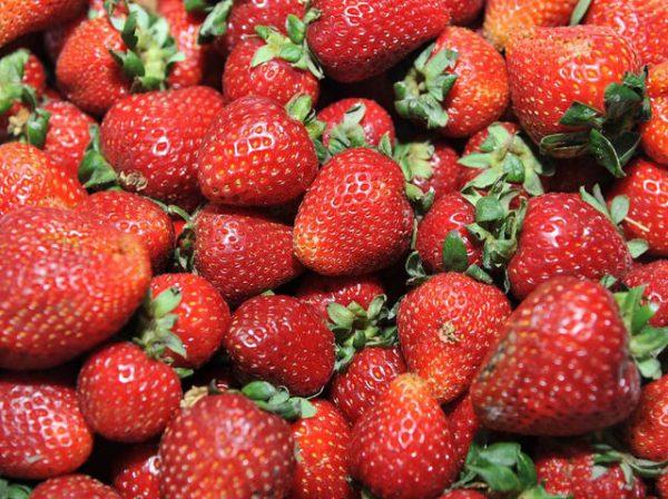 6-o-morango-e-um-dos-alimentos-mais-contaminados-por-agrotoxicos-venilton-kuchler-sesa