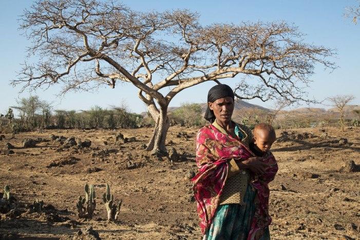 O impacto devastador das mudanças climáticas na Etiópia