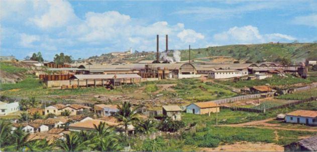 Impactos socioambientais da Bralanda no sul da Bahia