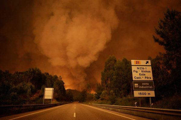 edrógão Grande causou 62 mortos Incêndio de grandes dimensões em Pedrógão Grande, Leiria Foto Paulo Cunha/lusa