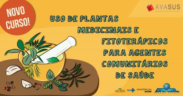 Plataforma online do SUS oferece curso sobre o uso de plantas medicinais