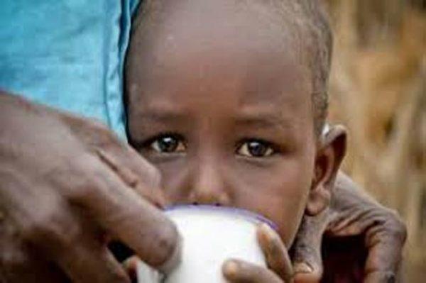 FAO considera grave situação de segurança alimentar na Etiópia