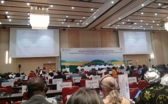 Tratado internacional debate direito dos/as camponeses/as às sementes