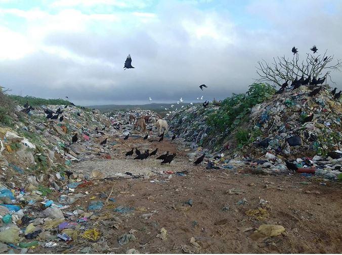 Inércia histórico-política em torno do lixão em Cícero Dantas, Bahia