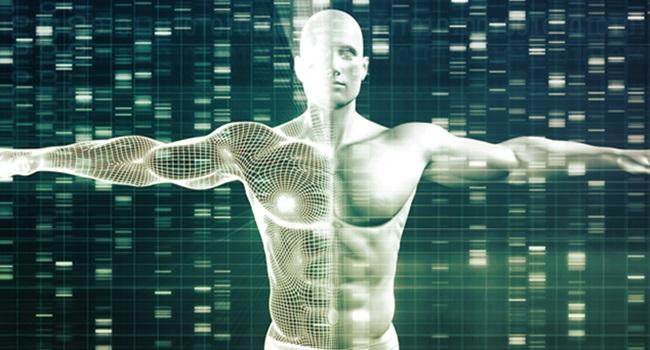 Estudo aponta vínculo genético na orientação sexual masculina